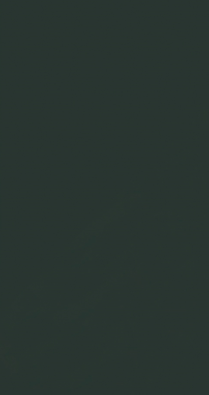 P-Black[磨] [マット]
